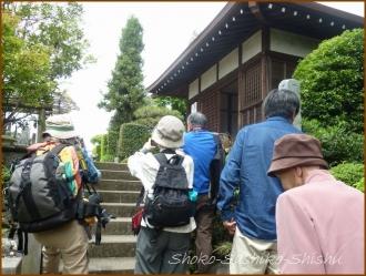 20150426 24 カメラ 1 東長谷寺