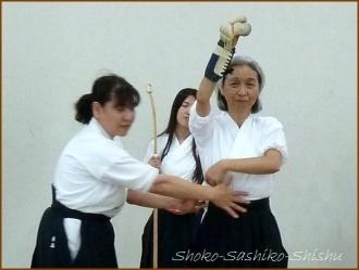 20150429  デモ 4 薙刀