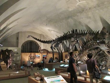 東海大4恐竜ルーム