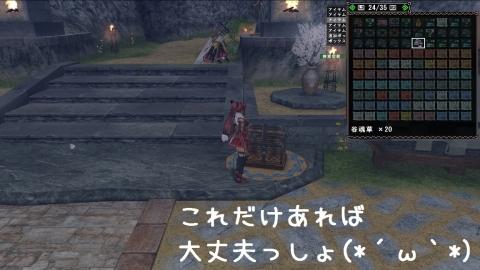 0413谷魂草