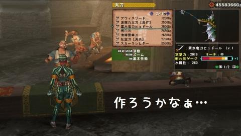 0602ガノ亜太刀