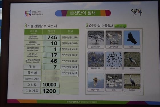 141219suncheon.jpg