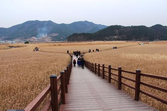 141219suncheon (17)