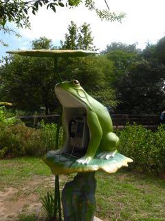 台北のカエル公衆電話