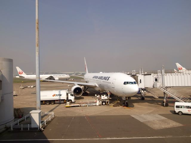 JAL - 1 (1)