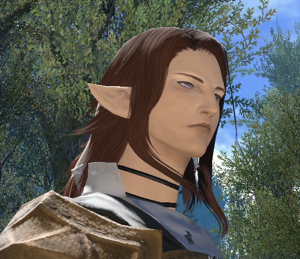 chasseur-ff14.png