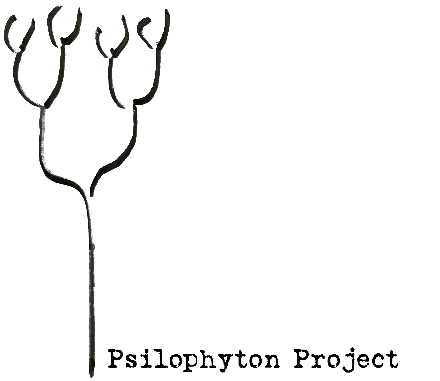 PsilophytonProjects with Title1-2
