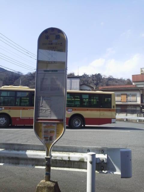 P1001430.jpg