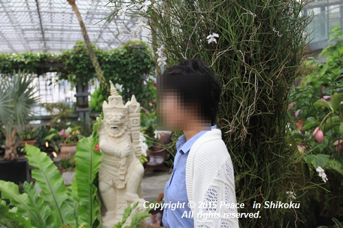 awaji-0406-1300.jpg