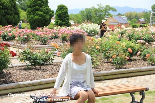 awajihanamidori-0518-3033.jpg