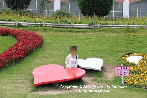 awajihanamidori-0518-3067.jpg
