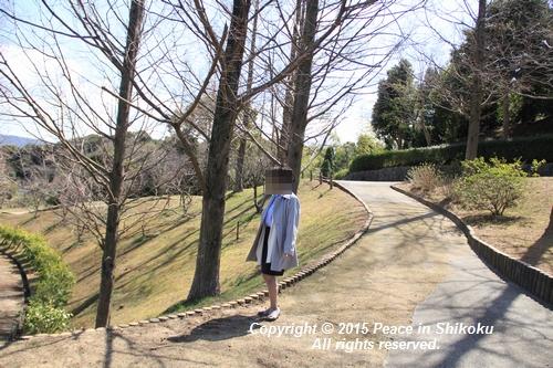 ijawa-0323-0470.jpg