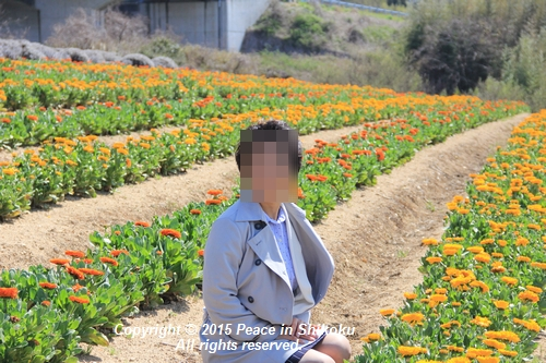 ijawa-0323-0551.jpg