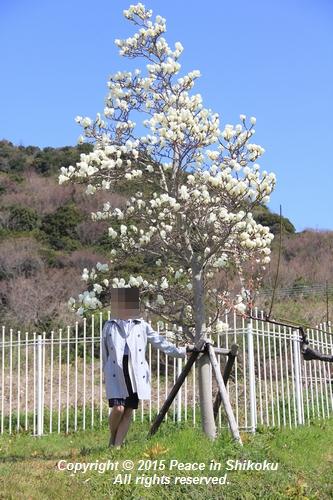 ijawa-0323-0564.jpg