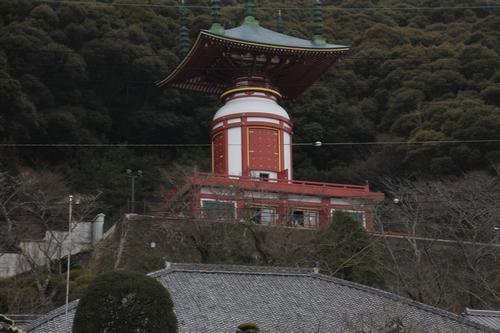 yaku-0126-7656.jpg