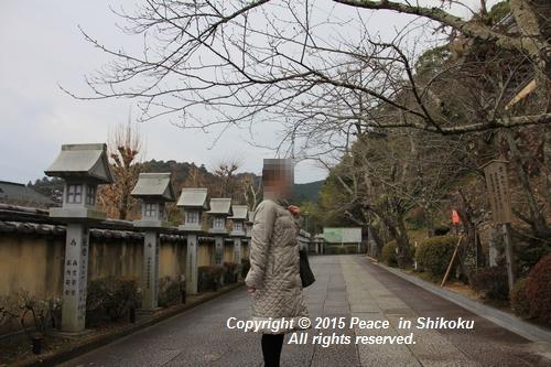 yaku-0126-7663.jpg