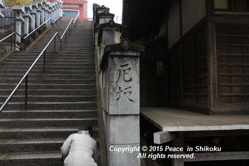 yaku-0126-7684.jpg