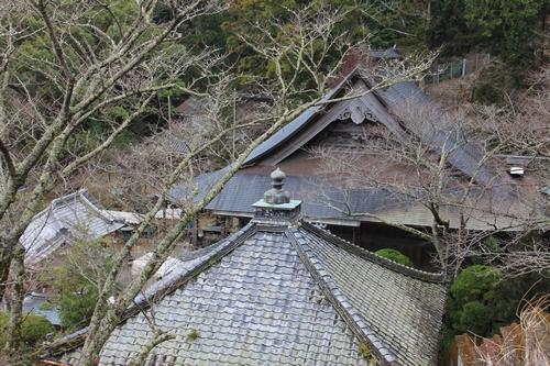 yaku-0126-7686.jpg