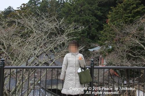 yaku-0126-7698.jpg