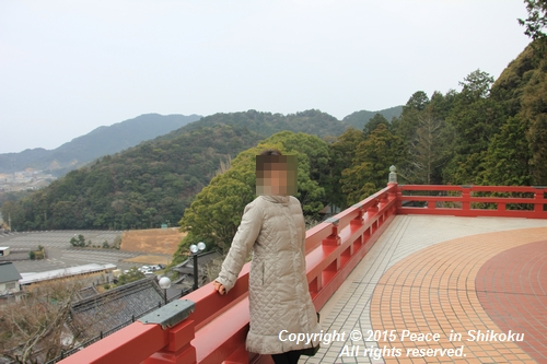 yaku-0126-7711.jpg