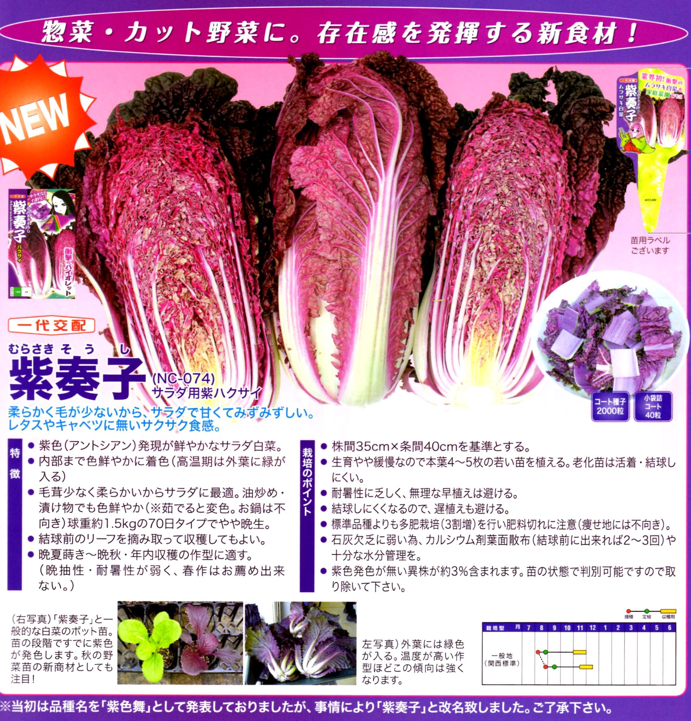 murasakisoushi-katarog.jpg