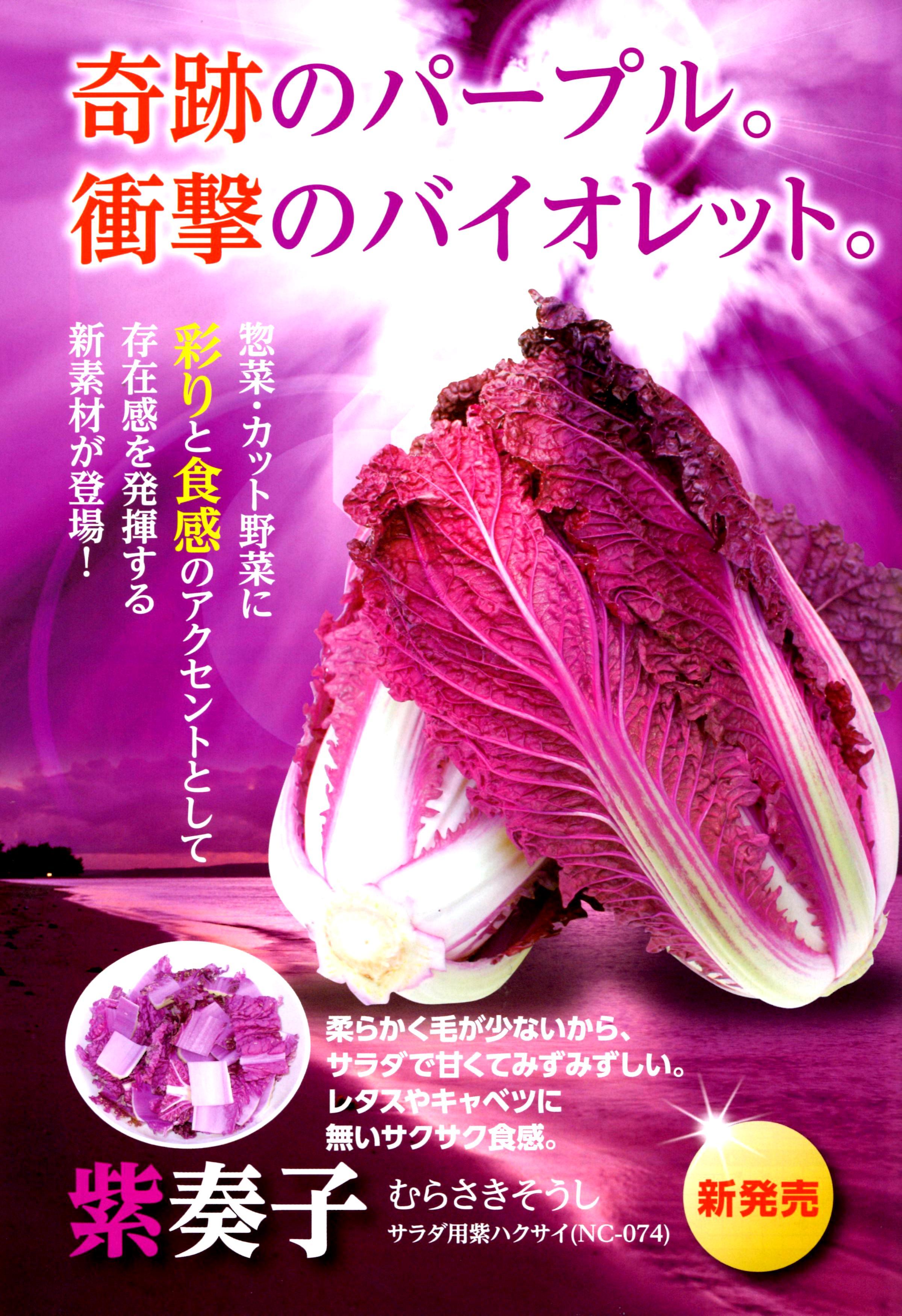 murasakisoushi-panf.jpg