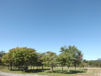 DSCF3915.jpg