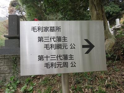 IMG_2424 毛利