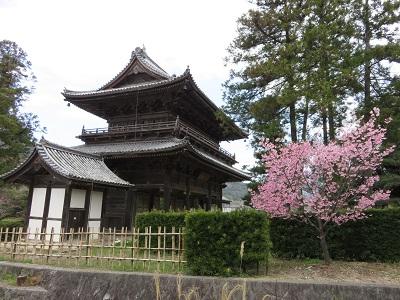 IMG_1061 東光寺