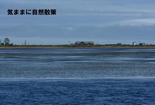 150814春国岱ー野付半島 (9)