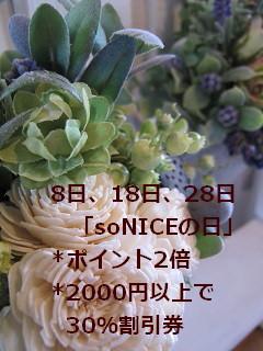 IMG_2722b.jpg
