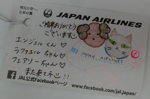 JAL ペット空輸 バーマン