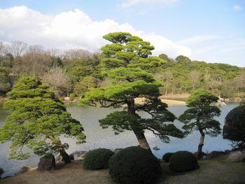 IMG_0039日本庭園