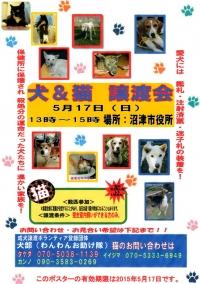2015-5-17shiyakusho.jpg