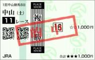 ショウナンアポロン 2着(複勝)