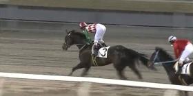 20150331 川崎11Rスイートピー賞 ティアップサニー 05