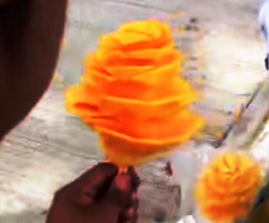 花マンゴー03