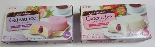 ガトーアイス01