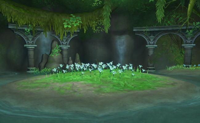 テンスの花22