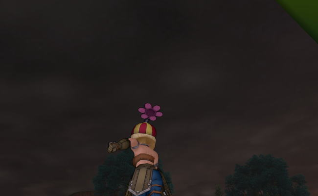 テンスの花51
