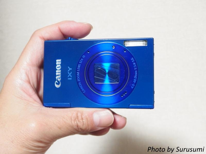 P3290008-33s.jpg
