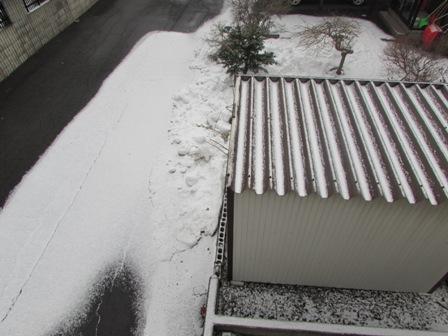 うっすらと雪が