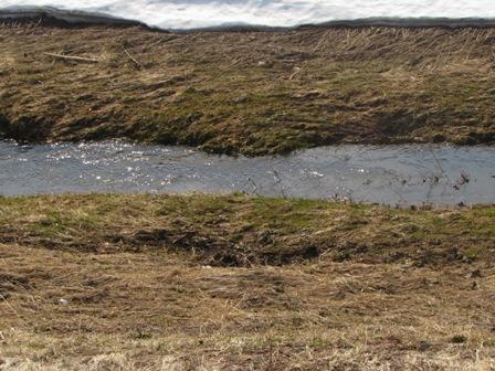 雪に埋もれていた川も