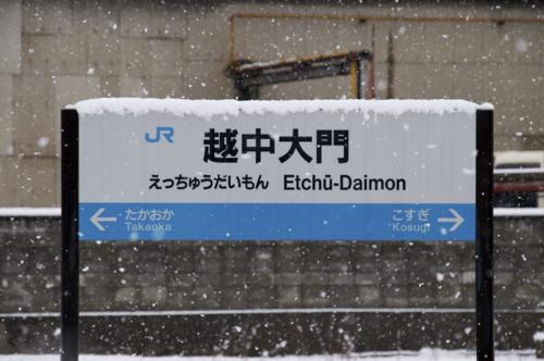 DSC06950_1.jpg