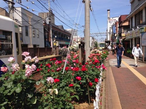 写真 2015-05-17 9 46 50