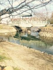 田口不動産 元荒川 水鳥橋