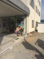 田口不動産 行田店 グリーンカーテン
