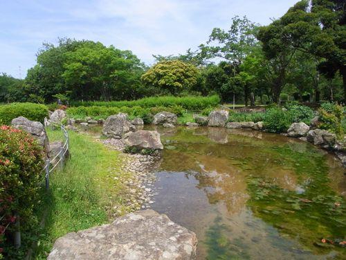 袖ヶ浦公園11