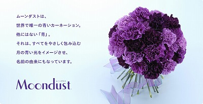 s-main_03.jpg