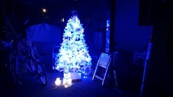 石橋からの自宅のクリスマスツリー